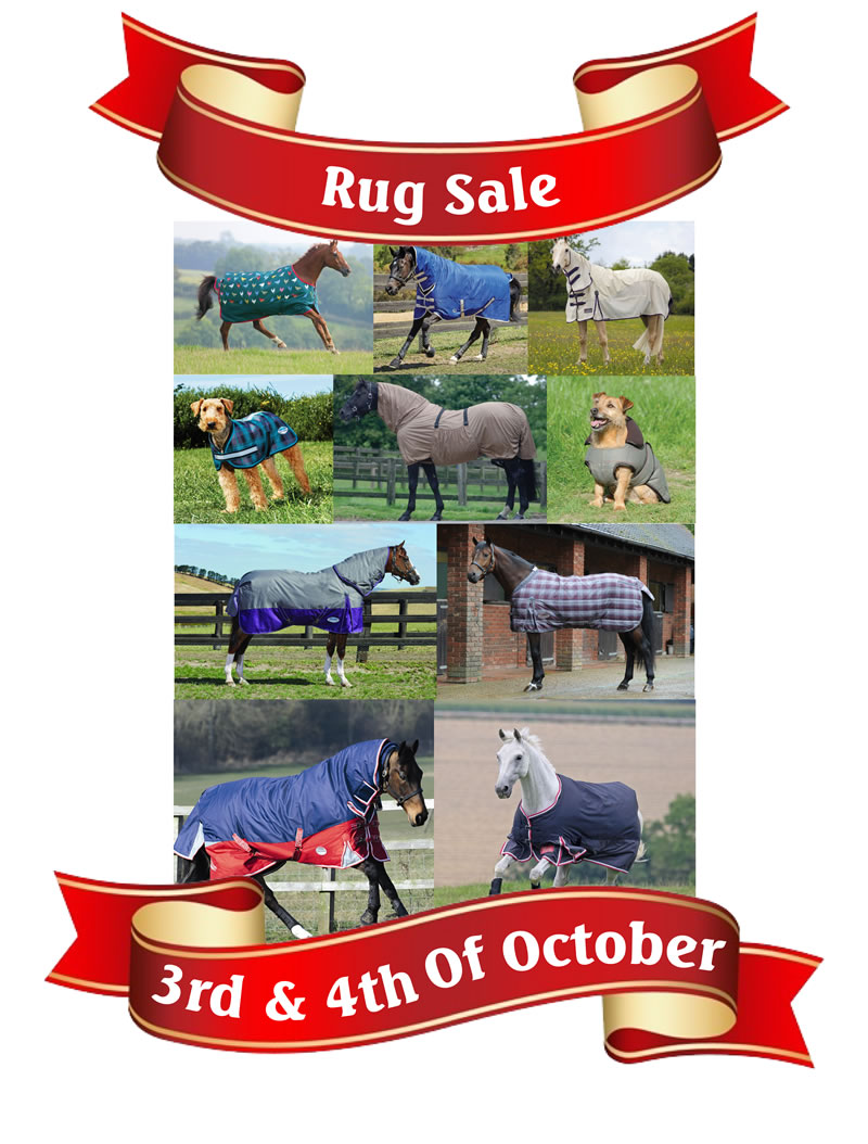 rug sale smaller